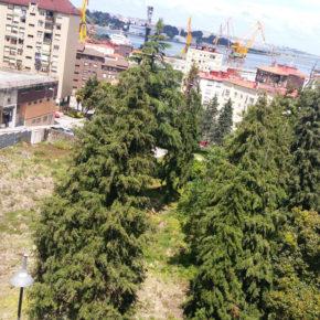 Ciudadanos Centro Oriental reclama la limpieza de una finca privada en Astillero