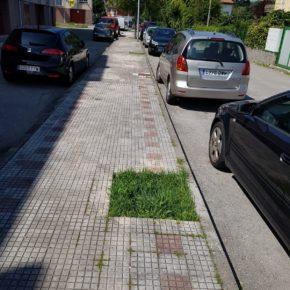 Ciudadanos Centro Oriental pide medidas de seguridad y accesibilidad en la calle Sainz y Treviño