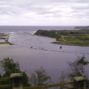 Cs Suances propone un Plan de Control en la Ría de San Martín para recuperar la calidad de las aguas