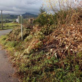 """Cs lamenta que el nuevo servicio de recogida de podas en Suances """"no atiende las necesidades de los vecinos"""""""
