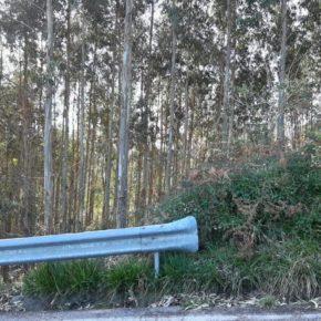 """Cs Cartes pide al Ayuntamiento que """"adopte medidas para evitar situaciones de peligro derivadas de los incendios"""""""