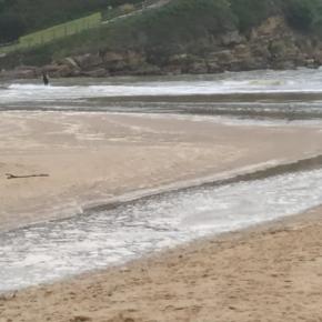 Cs Suances denuncia nuevos vertidos en la playa de La Concha