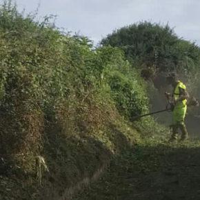 El Ayuntamiento de Castro-Urdiales procede al desbroce y limpieza de caminos en las juntas vecinales