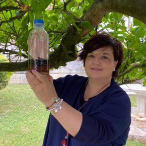 Concluye la campaña de trampeo de avispa asiática en Marina de Cudeyo con un total de 2.073 reinas capturadas