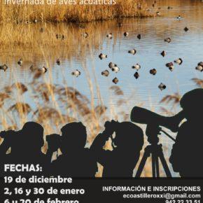Presentadas las rutas ornitológicas por las Marismas de Astillero para disfrutar del espectáculo de la invernada de aves acuáticas