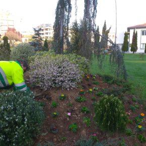 El Ayuntamiento de Castro-Urdiales saca a licitación el servicio de mantenimiento de Parques y Jardines